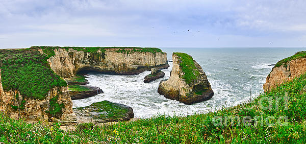Dramatic Panoramic View Of Shark Fin Cove Print by Jamie Pham