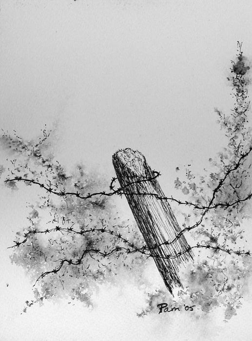 barbed wire drawing - photo #31