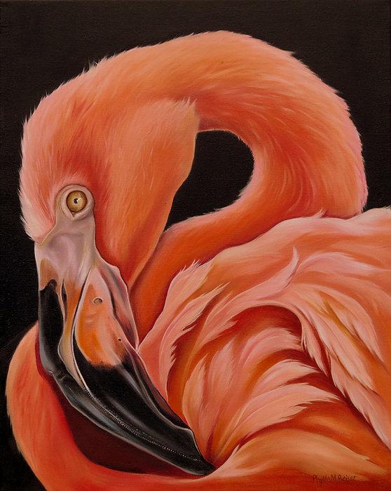 Flamingo Portrait Print by Phyllis Beiser