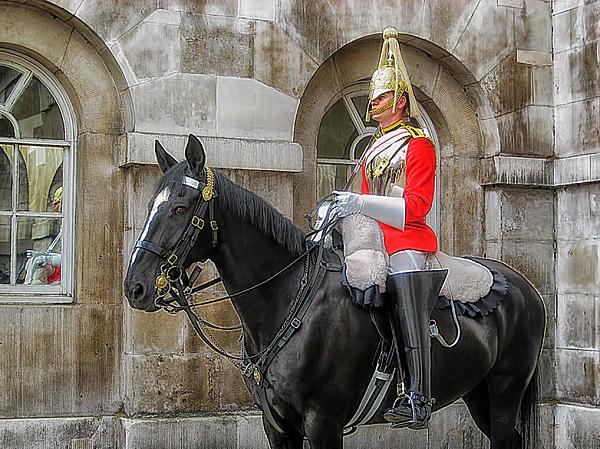 Horse Guard At Buckingham Palace by Mountain Dreams  Horse Guard At ...