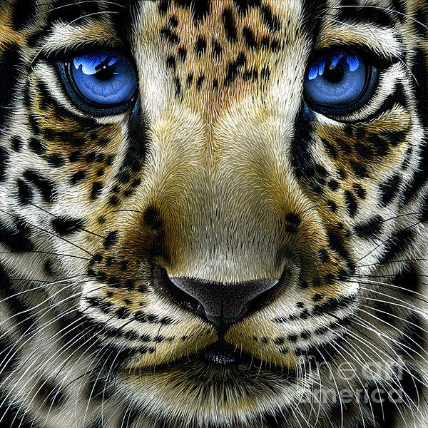 Jurek Zamoyski - Jaguar Cub