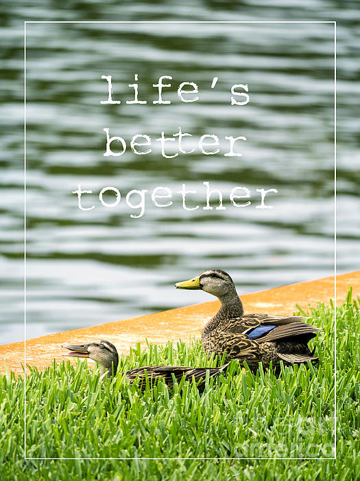 Life's Better Together Print by Edward Fielding