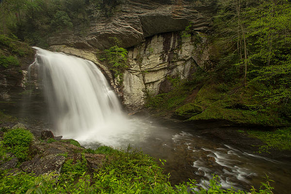 Looking Glass Falls Print by Doug McPherson
