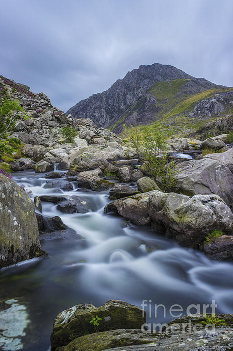 Ian Mitchell - Mountain Stream