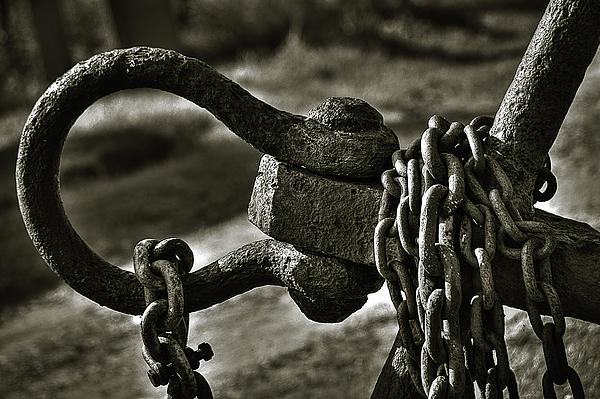 Old Rusty Anchor Print by Erik Brede