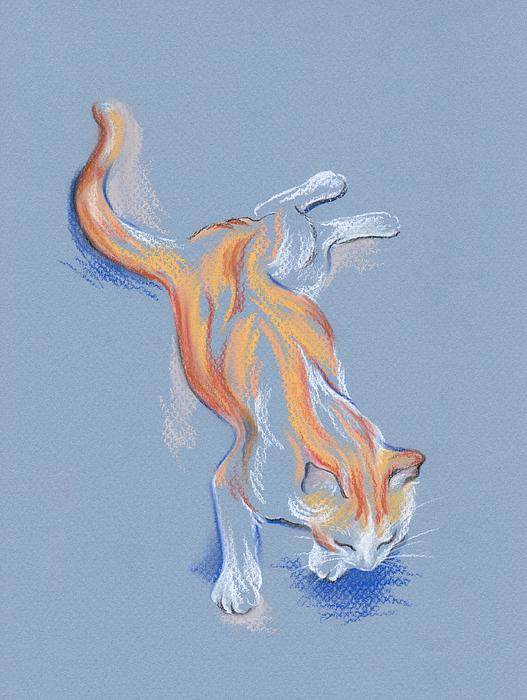 Orange And White Tabby Cat Print by MM Anderson