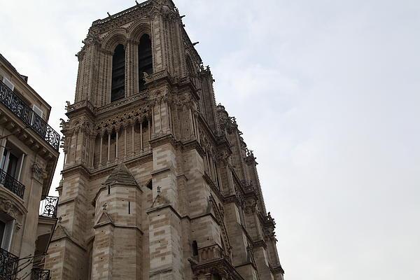 Paris France - Notre Dame De Paris - 011310 Print by DC Photographer