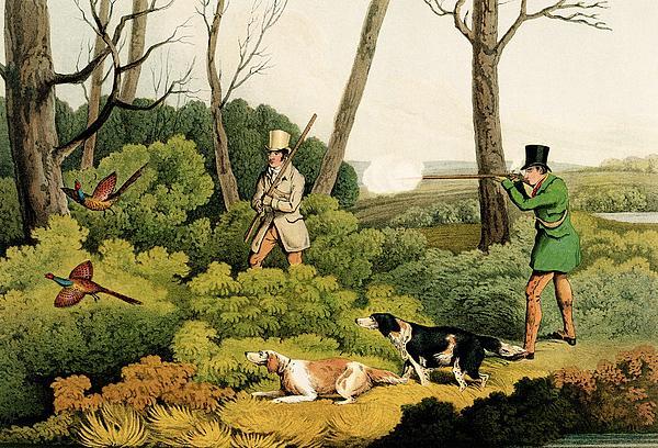 Pheasant Shooting Print by Henry Thomas Alken