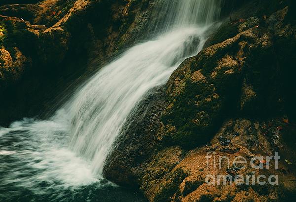 Iris Greenwell - Price Falls