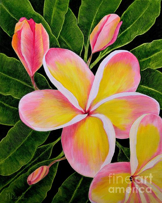 Mary Deal - Rainbow Plumeria