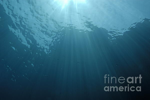 Rays Of Sunlight Shining Into Water Print by Sami Sarkis