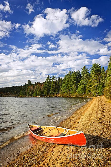 Red Canoe On Lake Shore Print by Elena Elisseeva
