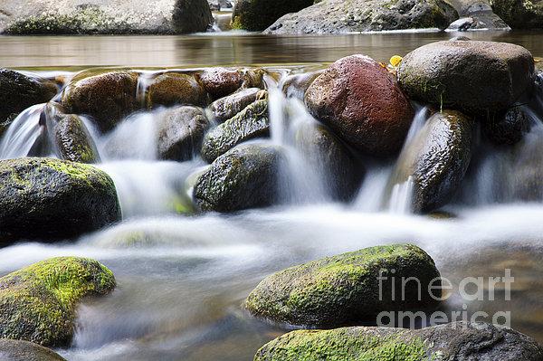 River Rocks Print by Jenna Szerlag