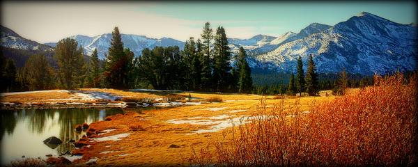 Sierra Panorama Print by Lynn Bawden