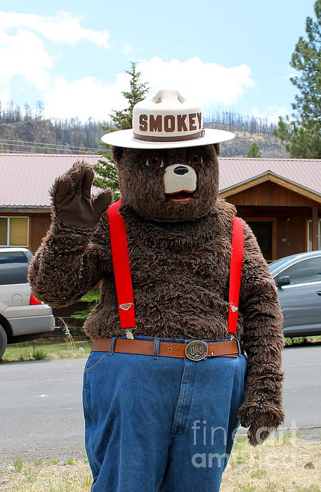 Pamela Walrath - Smokey the Bear