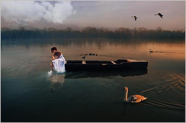 Swan Lake Print by Gabor Dvornik