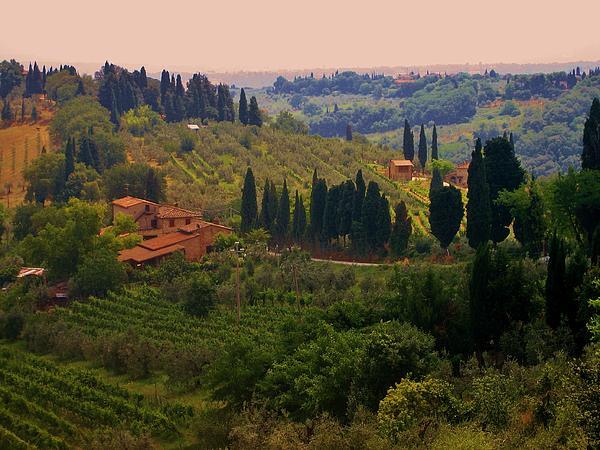 Dany  Lison - Tuscan Landscape
