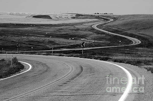 Winding Road Print by Sue Smith
