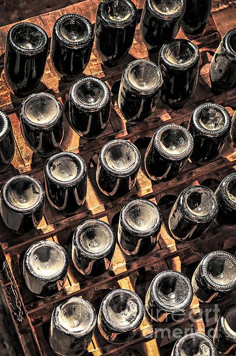 Wine Bottles Print by Elena Elisseeva