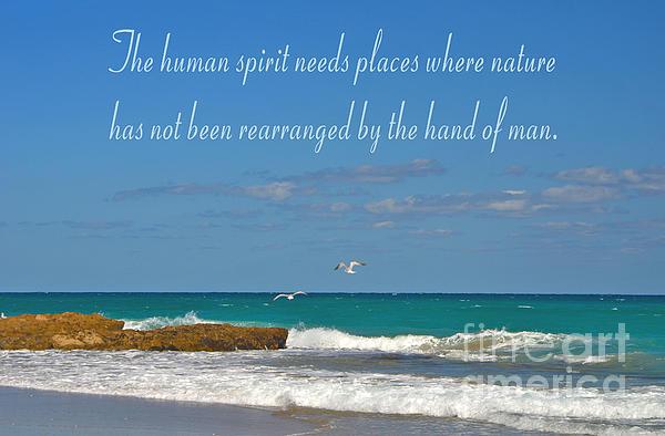Joseph Keane - 219- The Human Spirit
