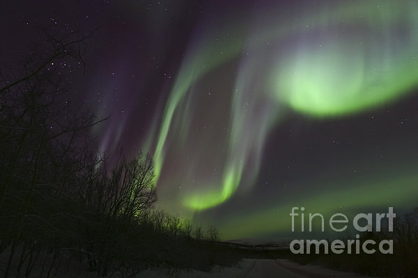 Aurora Borealis By Fish Lake Print by Joseph Bradley