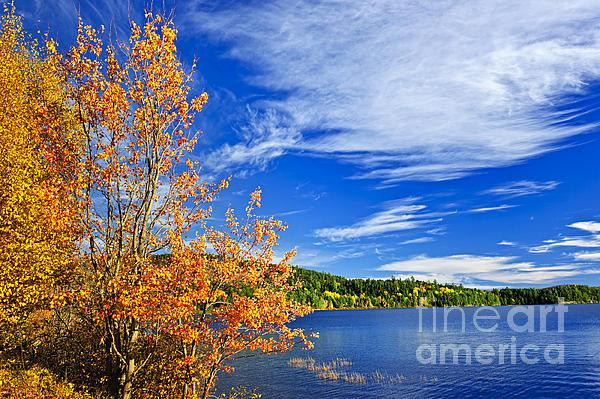 Elena Elisseeva - Fall forest and lake