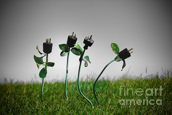 Growing Green Energy Print by Amy Cicconi