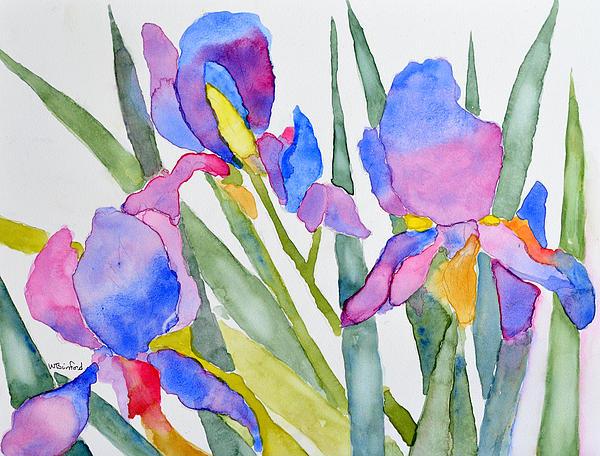 Irises Print by Wade Binford