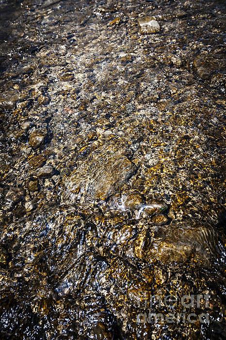 Rocks In Water Print by Elena Elisseeva