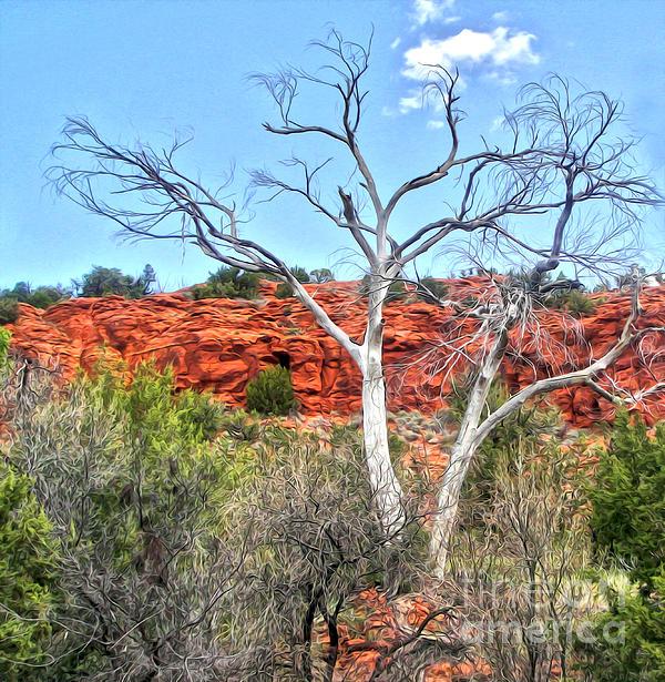 Sedona Arizona Dead Tree Print by Gregory Dyer