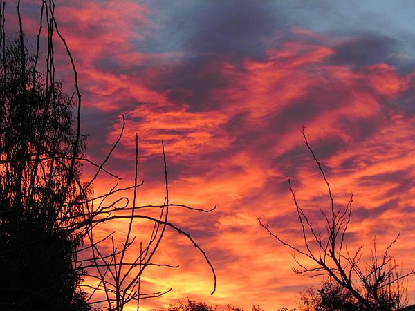 Sunset Skys Print by Joyce Woodhouse
