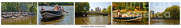 Central Park Afternoon Print by Madeline Ellis