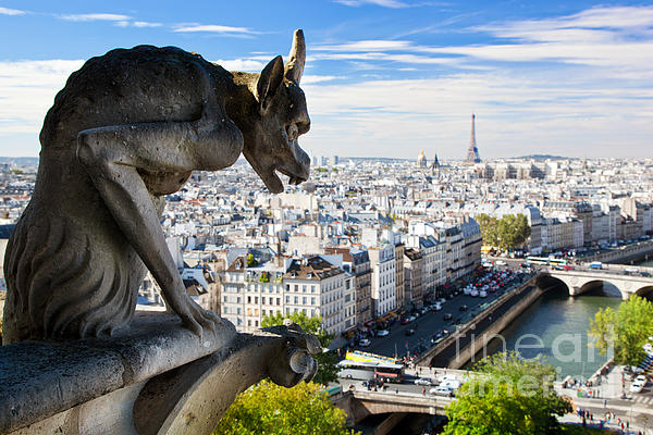 Paris Panorama France Print by Michal Bednarek