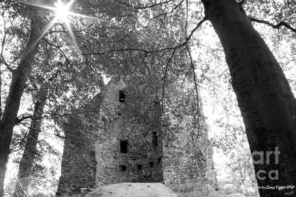 ILONA ANITA TIGGES - GOETZE  ART and Photography  - Ruins of Waldenburg Castle