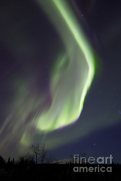 Aurora Borealis Over Fish Lake Print by Joseph Bradley