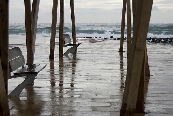 Catalina Lira - Rainy Day