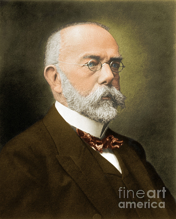 an overview of bacillus anthracis by robert koch in 1877 Robert koch's discovery of the anthrax bacillus in 1876 launched the field of medical bacteriology a 'golden age' of scientific discovery ensued a century after koch's death, we remember his life and work.