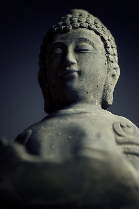 Buddha Print by Falko Follert