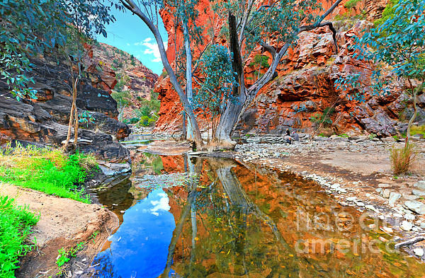 Serpentine gorge central australia iphone 5 5s case for for Landscapers adelaide western suburbs