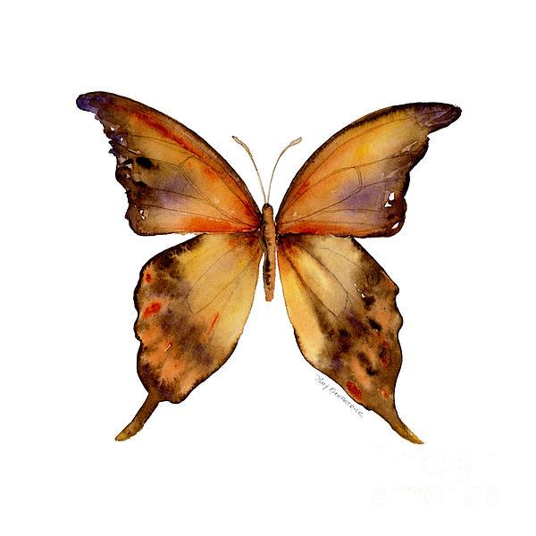 7 Yellow Gorgon Butterfly Print by Amy Kirkpatrick