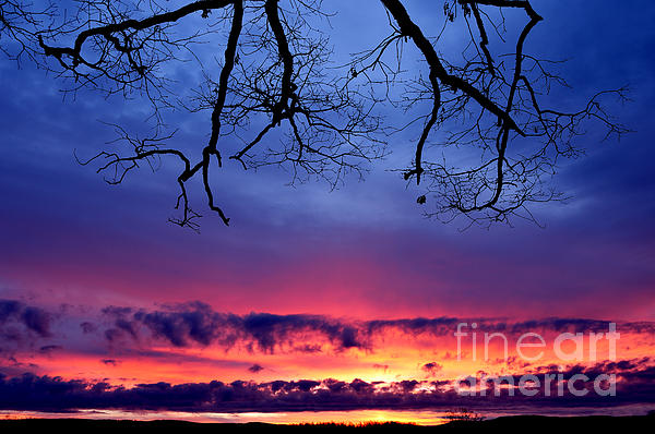 Red Sky At Morning Print by Thomas R Fletcher