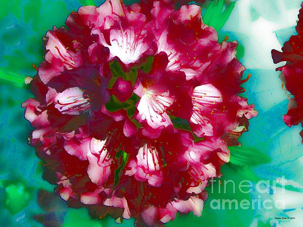 A Beautiful Rhododendron Print by Annie Zeno