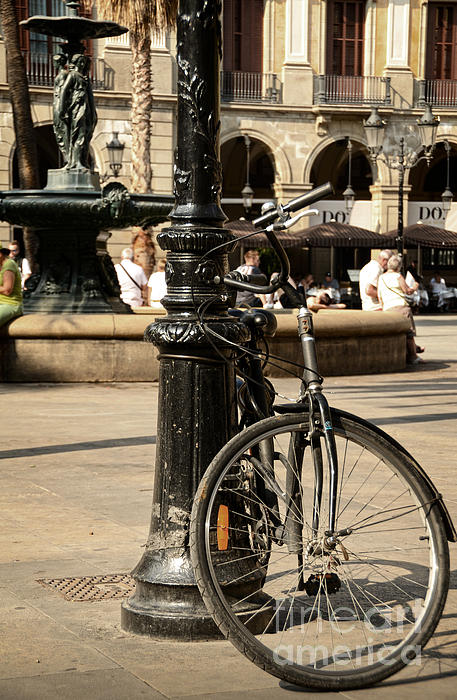 A Bicycle At Plaza Real Print by RicardMN Photography