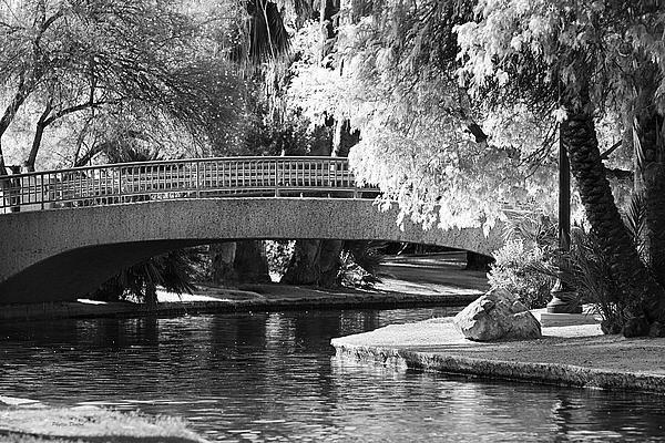 Phyllis Denton - A Bridge In the Sun