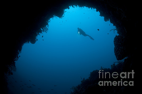 A Diver Explores A Cavern In Gorontalo Print by Steve Jones