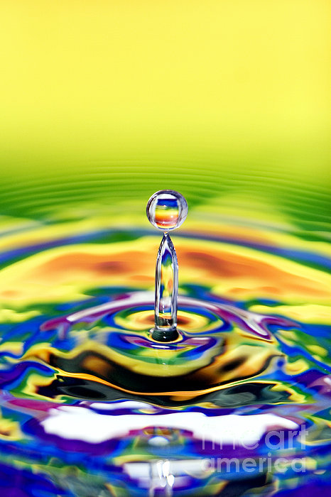A Drop Of Colour Print by Tim Gainey
