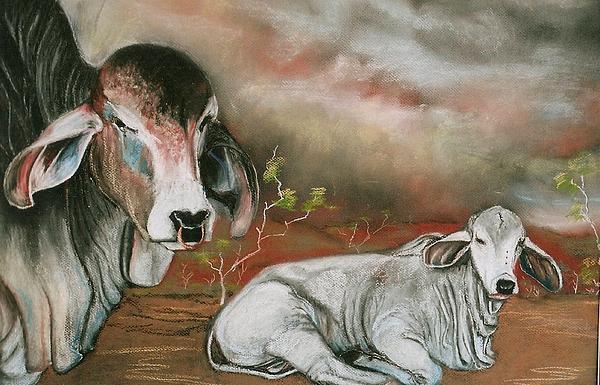 A Lot Of Bull Print by Sandra Sengstock-Miller