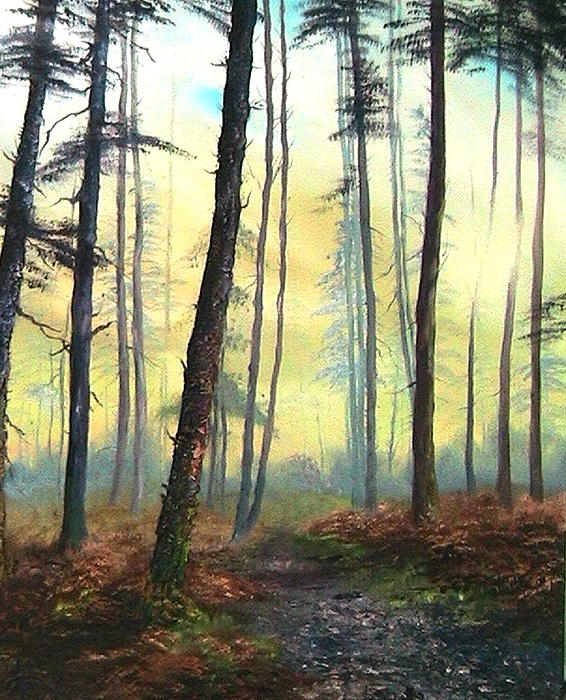 Jean Walker - A Lovely Walk on Cannock Chase
