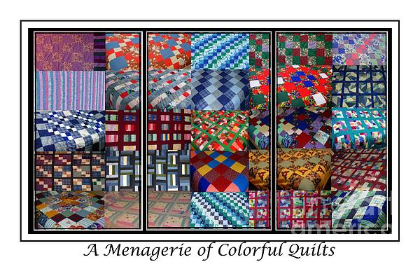A Menagerie Of Colorful Quilts Triptych Print by Barbara Griffin