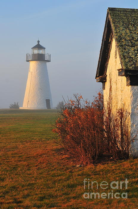 A Morning Fog Print by Catherine Reusch  Daley